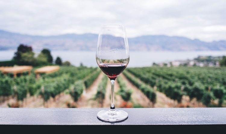 Wine glass in front of a beautiful view